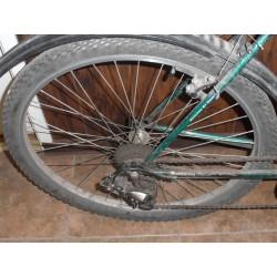 Jalgratas SupeRion Roheline