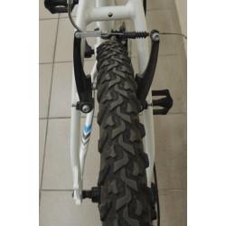 Jalgratas Muddyfox Anarhy 100